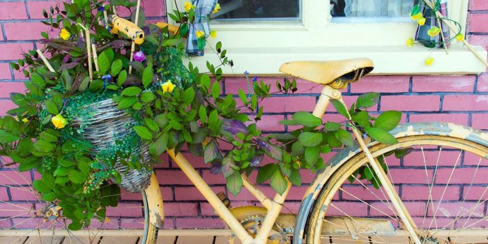 How To Convert An Old Bike Into A Beautiful Planter